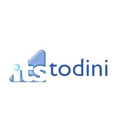 Ricambi ITS Todini