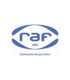 Ricambi Raf